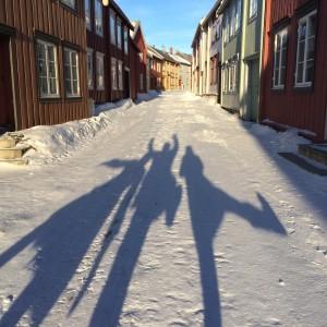 Biochemists in the beautiful town of Røros.